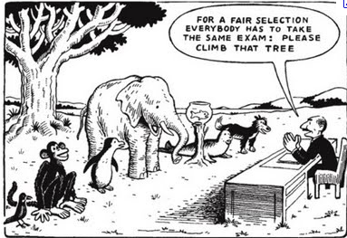 Same Exam For All Animals Cartoon