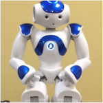 Nao Robot from Westminster Technologies