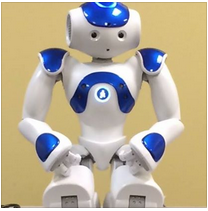 Picture of NAO Robot